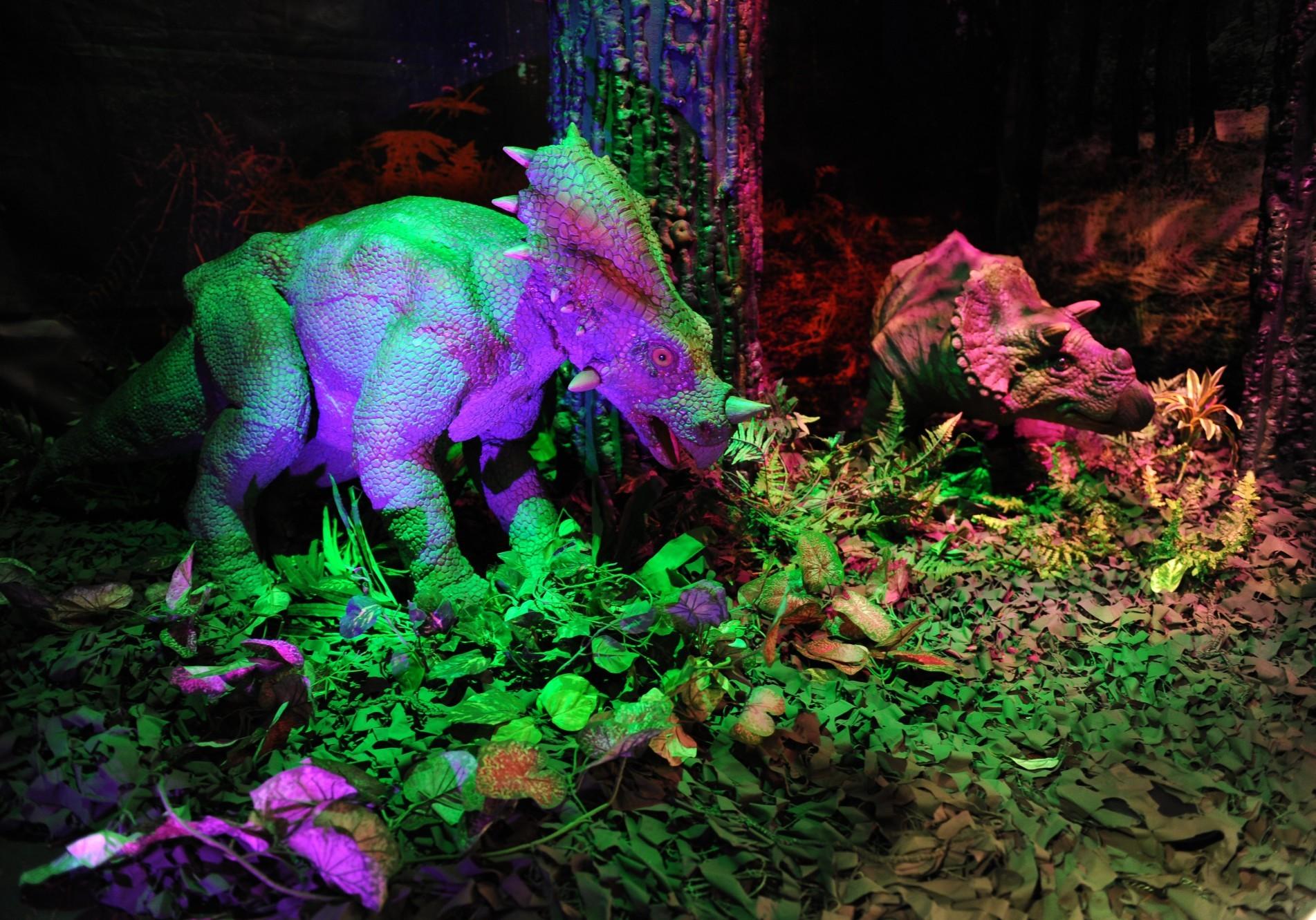 StyracosaurusSML